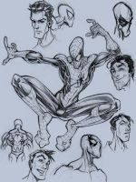 sketch of spidey by osnaya