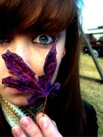 purple leaf by brittsperspective