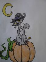 Kitty of the Witch Coven by Darkbullfrog