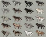 Semi-Realistic Wolf Adoptables Set 11 - CLOSED by Therbis