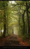 Country Lane Premade Background by RottonNymph