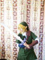 Link from Twilight Princess by Nafady