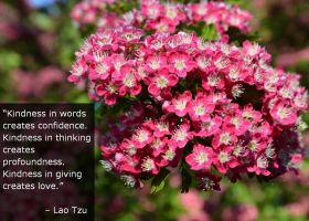 Quote on Kindness by Lao Tzu by Leafeo