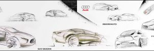 Application Portfolio - Audi by marcomercedes