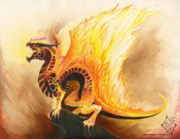 Elemental Dragon: Fire by SabrielDragonkin