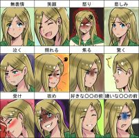 Auvergne's expression chart by GueparddeFeu
