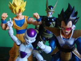 Dragon Ball Z - S.H.figuarts figures by stopmotionOSkun