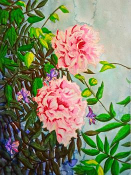 Peonies by Erin-Leigh