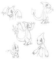 Charmeleon Sketches by 0parkp