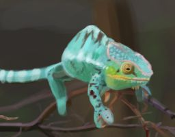 April 5th Panther Chameleon speed paint by Allord