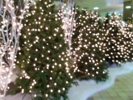 Chritmas in the mall 14 by doveangel123