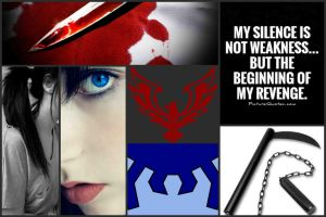 DC- Red Falcon Aesthetic by JennyMarionette