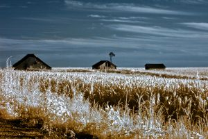 Kansas at It's Best by Pennes-from-Heaven