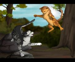 Beware low flying cats by heylorlass