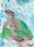 Green Sea Turtle for Kai by Eviecats