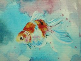 Goldfish - poster colour by popo8328