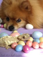 Easter 2011 - Biscuit and Vega by styx-leagon