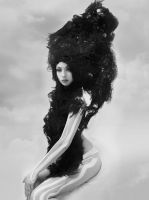 wig black and white by visualsoup