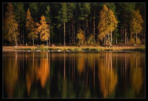 Autumn by the Lake by jjuuhhaa