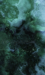 Algae by FractalEuphoria