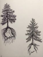 Pine Tree State tattoo design two by ramble-inthe-roots