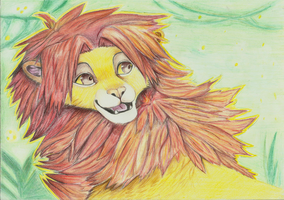 Simba by Nessie162