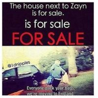 Zayn's Neighbor. by VeryRandom022