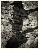 Trees and Stones 11 by HorstSchmier