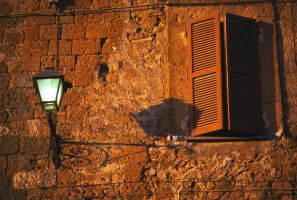 Window Streetlight 2206955 by StockProject1