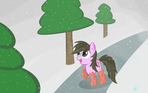 Commission - Winter Wonderland by Doovid97