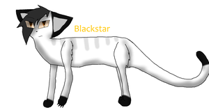 Blackstar (100 Warriors Challenge) by TheSlendermanIsHere