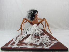 Recluse10 by MaryRopelatoArtDolls