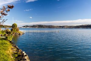 Winter in Dunedin by ARC-Photographic