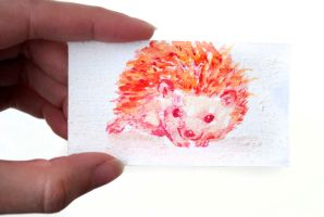 Tiny Watercolor Hedgehog Painting by Strange-1