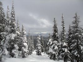 Big White Winter by IvanAndreevich