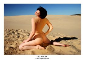 Desert Ecstasy by scottb