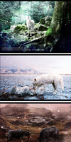3 photomanips by OneMinuteSketch