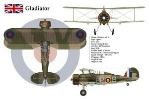 Gladiator GB 247 Sqn 3-View by WS-Clave