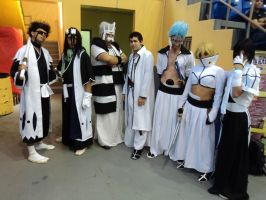 Amazing Bleach crew by Santy-Orm