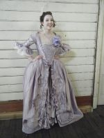 18th Century French Court Gown by bridget-aus