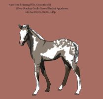 Foal Design for AngelitoCaz by MagicWindsStables