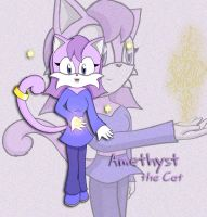 xX:. Amethyst the Cat .:Xx by MariahAcorn