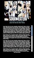SOUL EATER Journal Skin by KalteEinsamkeit