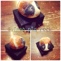 Guinea pig rock by SonicGirl8