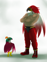 Hawlucha vs Tizoc by ss2sonic
