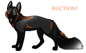 Crossfox for auction - SOLD by Janscyther