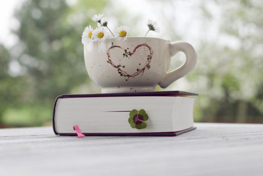 the cup and the book by LenaCramer
