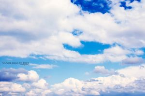 Day 165: After the Rain by umerr2000