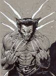 Wolverine Graytone sketch by RNABrandEnt