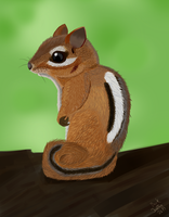 Chipmunk_01 by JonnyB1250